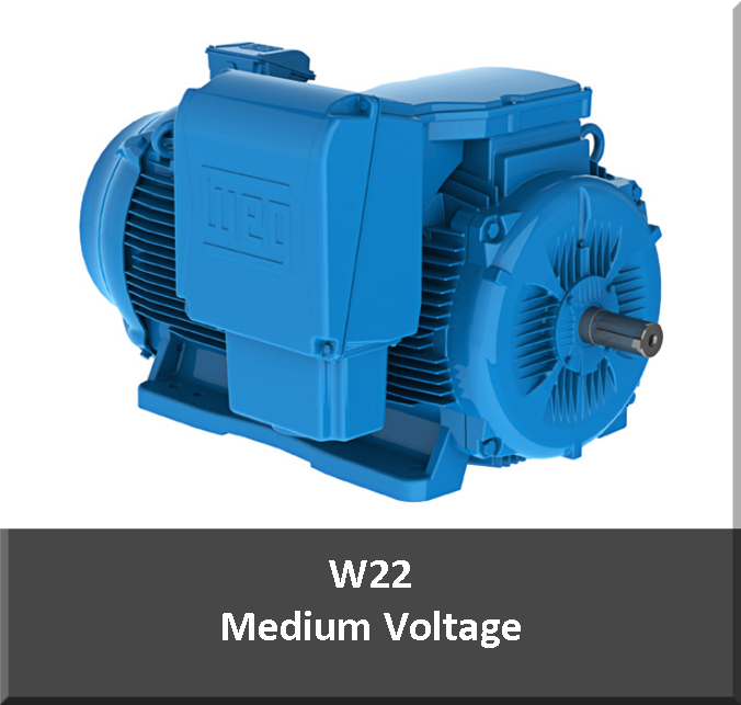 Medium Voltage Motors - Houston Motor and ControlHouston