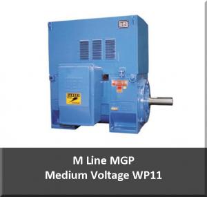medium voltage motor